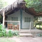 Enchoro Wildlife Camp Masai Mara - Relax In Style…